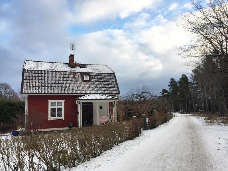 1-uppsala-snow
