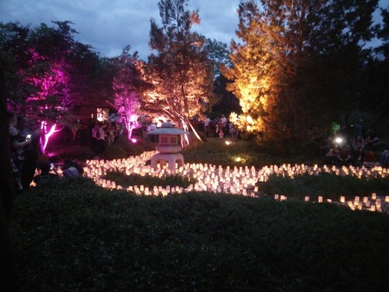 Nara candle festival canberra.jpg